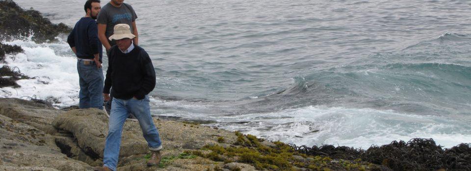 Mareas Negras: Qué son y qué  generan en el océano