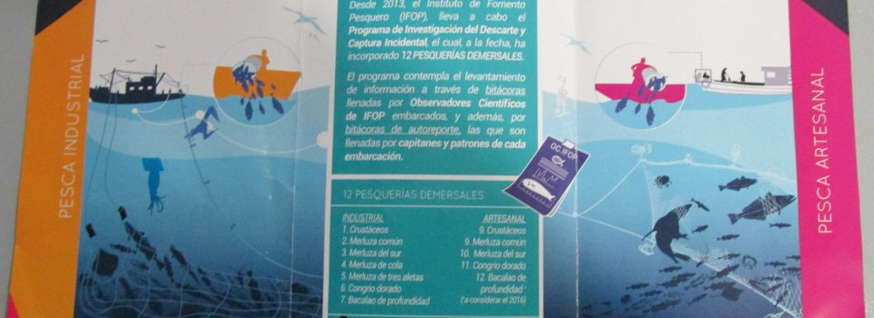Programa de investigación del  Descarte  y Captura incidental desarrollado por IFOP  realiza campaña informativa a los usuarios