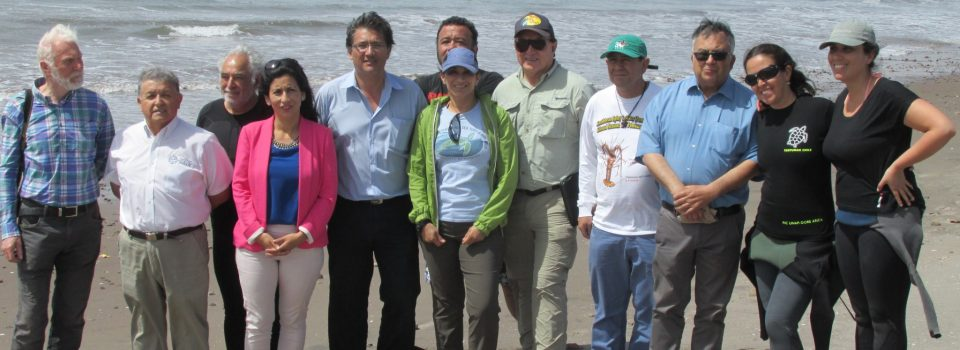 National Group of Sea Turtles met in Arica