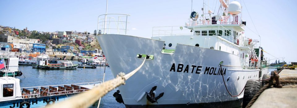 Abate Molina Scientific vessel sailed for anchovy research