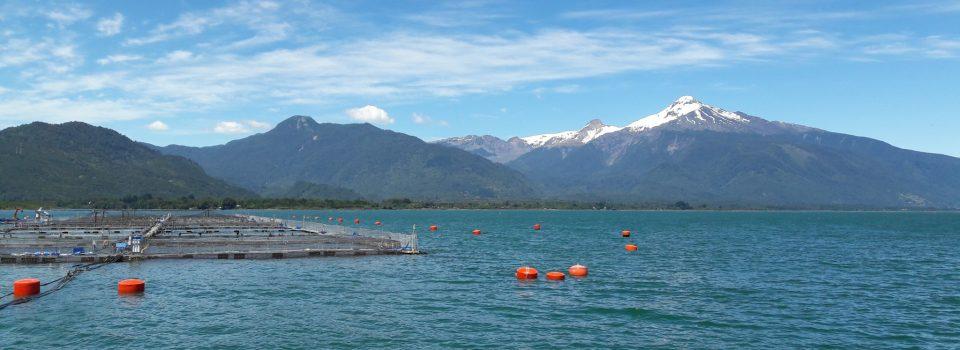 Desarrollo de un modelo para evaluar la capacidad de carga en el mar interior de Chiloé: Avances y Desafíos