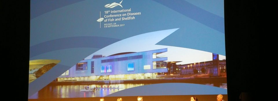 Chilean researchers attended the 18th International Conference on Fish and Seafood Diseases held in Northern Ireland