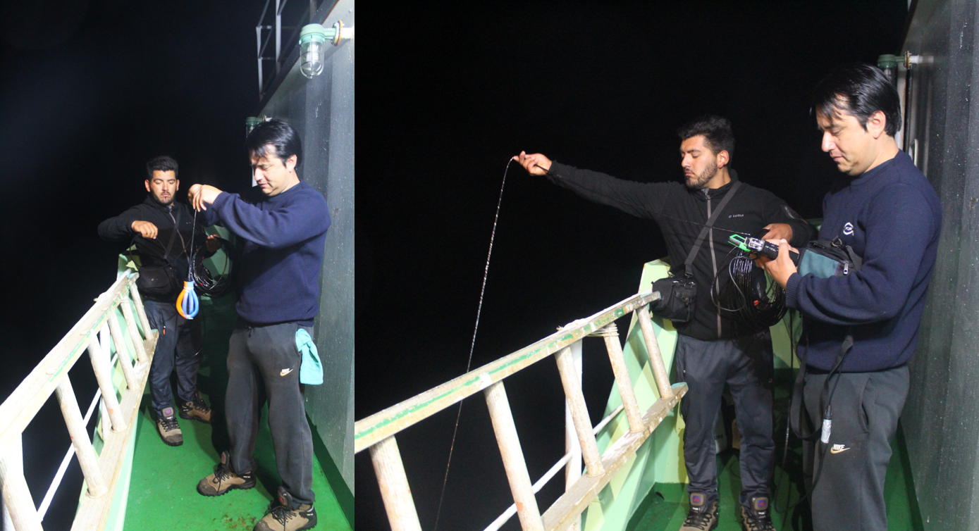 IFOP jointly with University of Toulon, France make cetaceans acoustic recordings