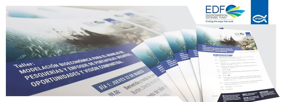 IFOP organiza taller de modelación bioeconómica para el manejo de pesquerías