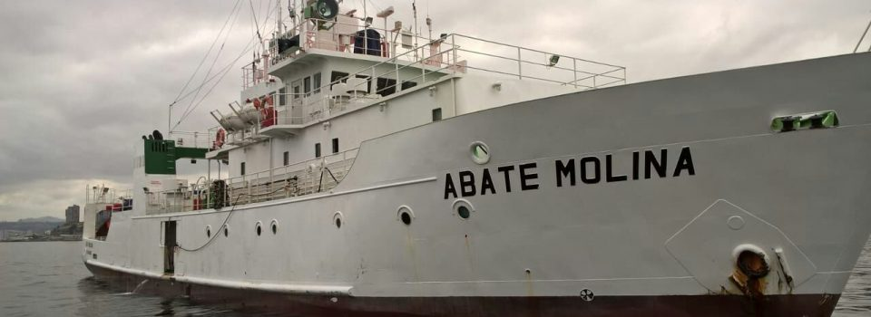 Abate Molina Scientific ship set sail to evaluate anchovy and common sardine.
