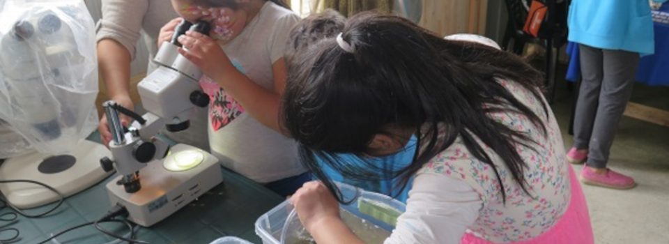 IFOP researchers develop workshops with children from El  Alerce community in Puerto Montt