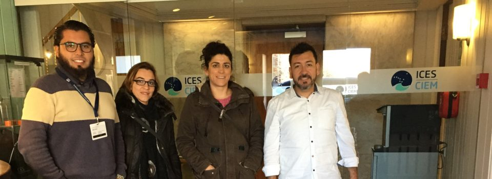IFOP researchers attend a fisheries bioeconomy course in Denmark