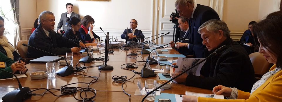 Director de IFOP expone en Comisión de Zonas Extremas del Senado