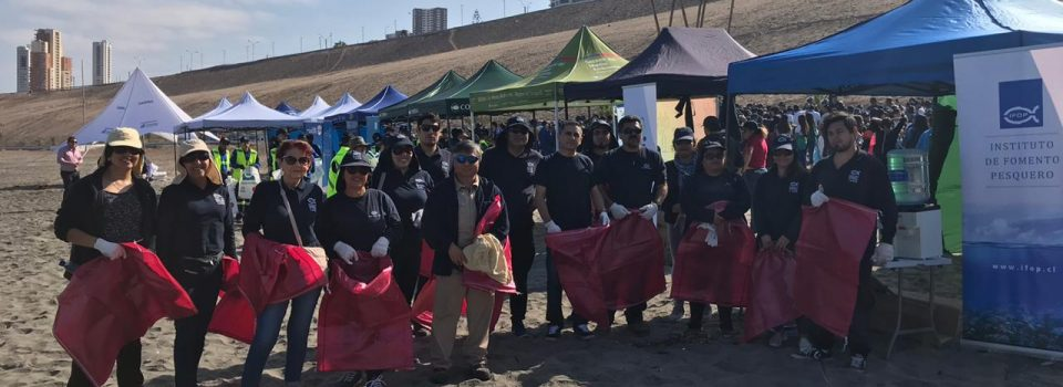 IFOP  has a outstanding participation Cleaning Iquique's Beach