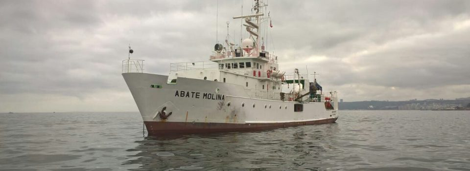 Scientific vessel analyze anchovy stock and common sardine between Valparaíso and Los Lagos regions.
