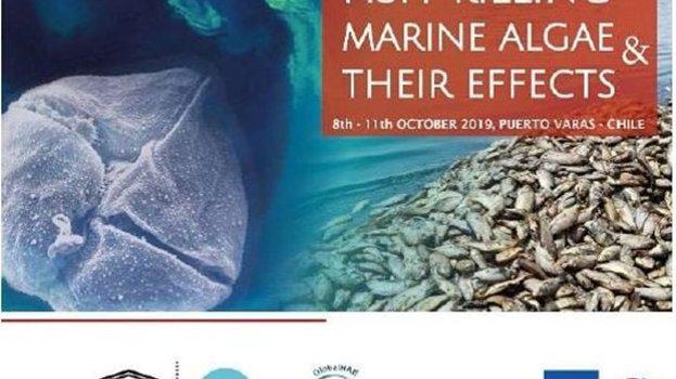 """IFOP organiza Coloquio Internacional Avanzado """"Estatus de la mortalidad de peces por FAN y sus impactos en un ambiente cambiante"""""""