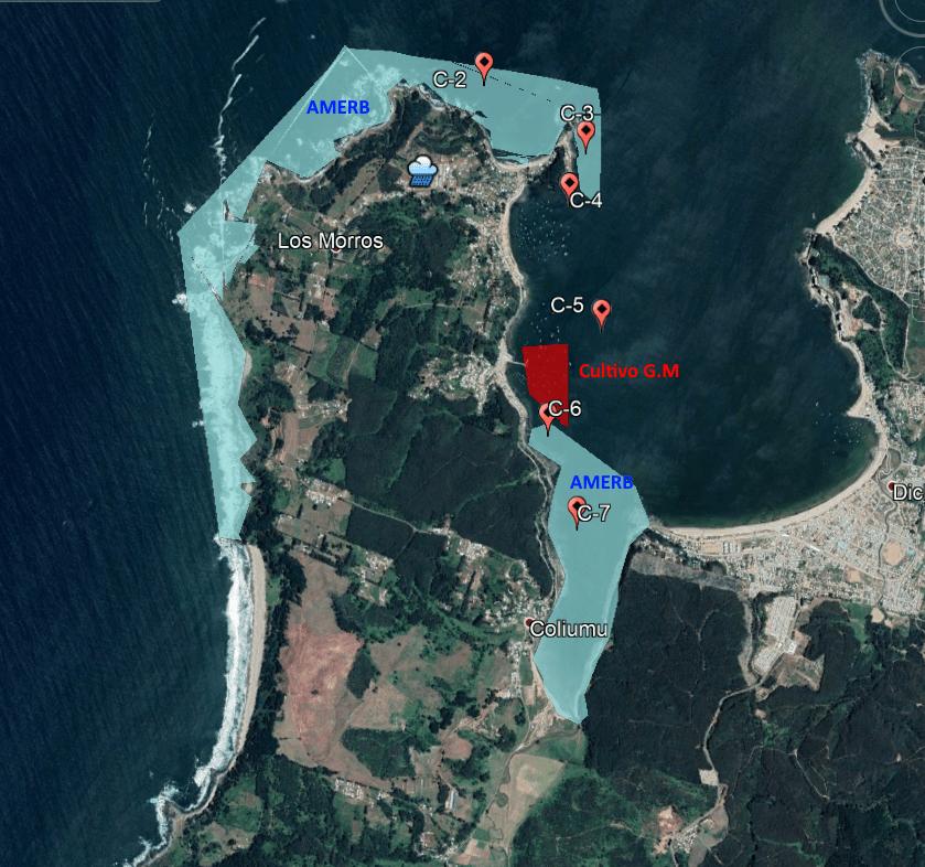 Location of sampling stations