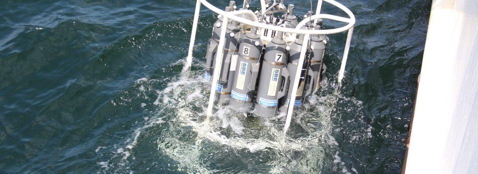 IFOP: Cruceros para la evaluación del stock desovante de anchoveta en las regiones de Atacama y Coquimbo, año 2020