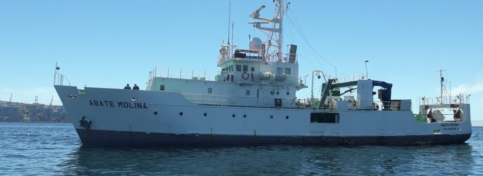 Abate Molina Scientific Ship set sail to evaluate  Anchovy resource