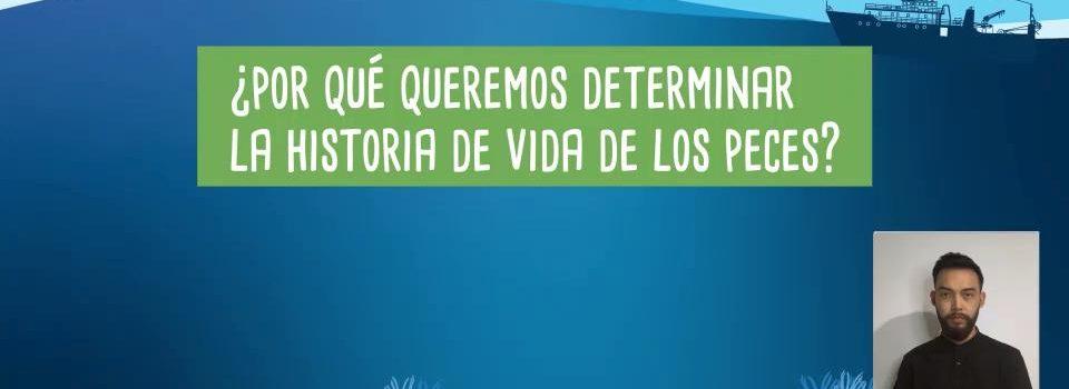 IFOP y Explora Valparaíso estrenan breves cápsulas para difundir la investigación científica marina